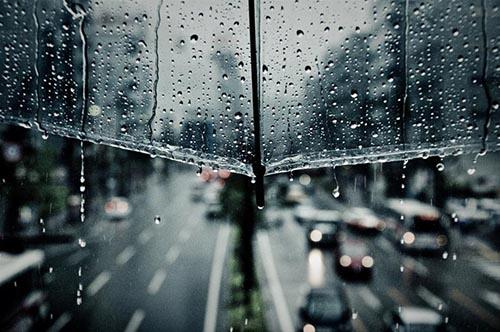 Cảm xúc chiều mưa